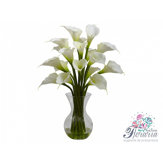 19 White Calla
