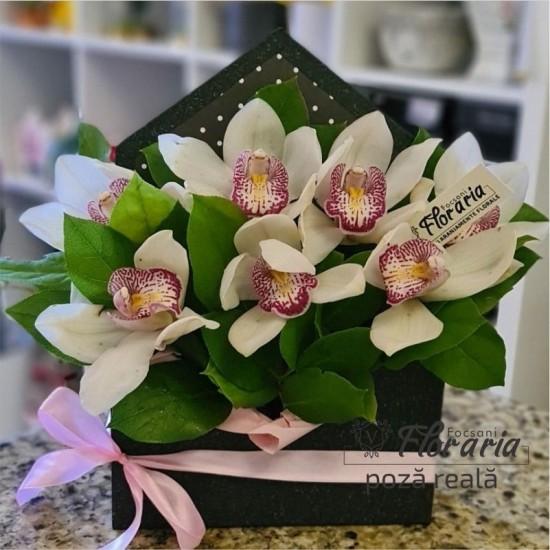 Floral Arrangement 7 Cymbidium