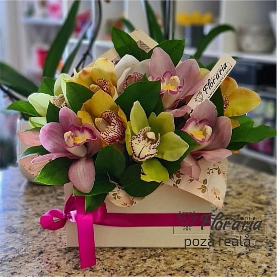 Floral Arrangement 9 Cymbidium