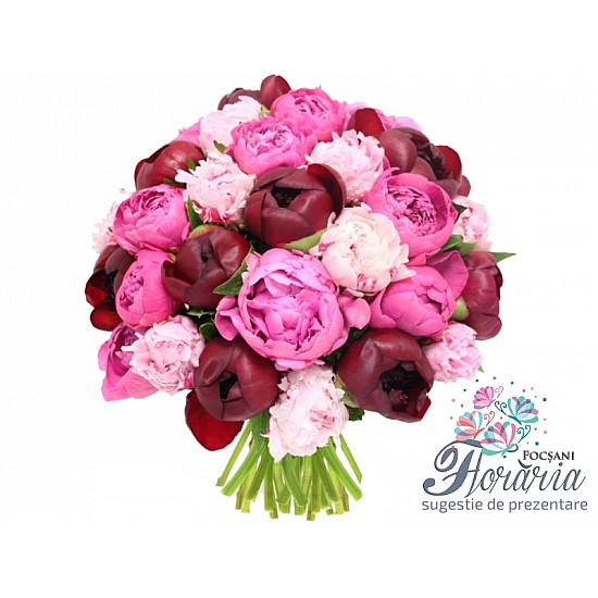 Bouquet 35 Mixed Peonies