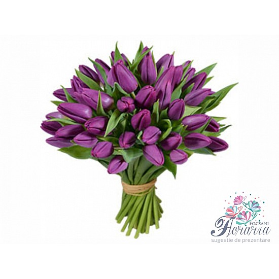Bouquet 25 Purple Tulips