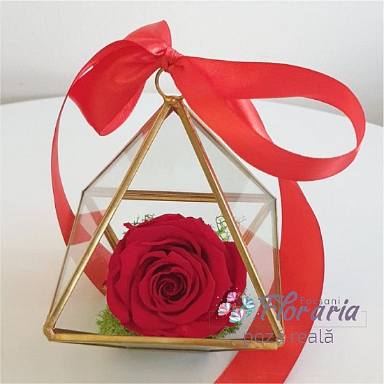 Cryogenate red rose in Terrarium glass with golden elements