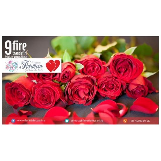 Arrangement 9 roses
